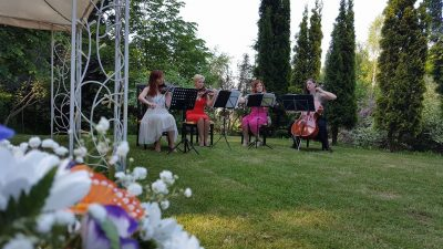 Oferta nunta Brasov