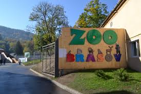 Zoo Brasov - In apropiere
